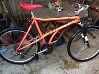 Retro Haro Extreme mountain bike
