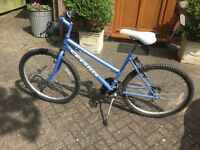 Concept cycles Celsius lady's bike eighteen shimano gears good tyres good brakes