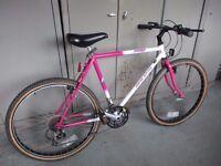 Ladies Dawes Kickback Mountain Bike / Road Bicycle Hybrid