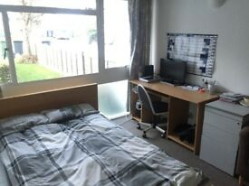 *Rent Reduced* 1 Student Room - Walking Distance to Surrey University + Station