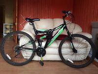 Silverfox mountain bike
