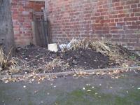 Free Top Soil :o) Easy to Get At :o) North Leamington :o)