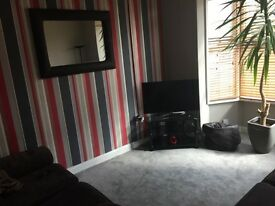 Room to rent in cool houseshare , would suit a working ,male or female aged 20-30,