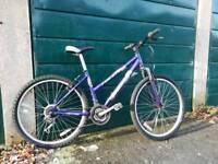 Shockwave XT580 small lady's bike