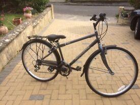 Professional Regent Gent's Bike