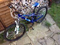 """Dawes Bandit 24"""" Wheel Unisex Boys Girls Suspension Mountain Bike / Bicycle"""