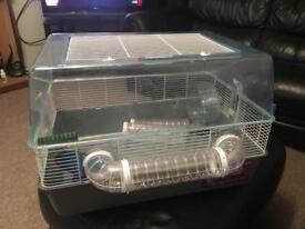 Hamster xage
