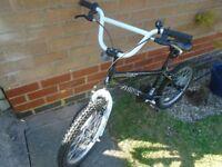 Zombie Rage BMX Bike