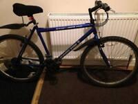 MuddyFox Bike, With Lights & Lock!