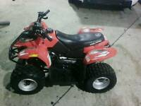 Quad bike 50cc polaris