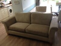 2 and 3 seater sofas from NEXT