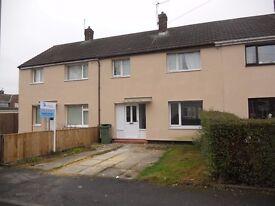 3 Bedroom Terraced House, Dunbar Road, Billingham, TS23 2EL