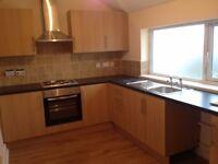 Lovely 2/3 bedroom house in Cwmbwrla, Swansea