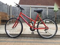 "Ladies Raleigh Max - USA Design - Mountain Bike. 18 speed gears. 26"" Wheels. Recently serviced."