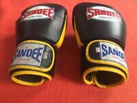 Sandee 16 oz boxing gloves *winning cleto reyes rival venum*