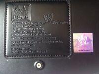Original WWE championship belt