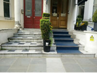 Flat in Kensington/Earls Court 2 bedrooms to swap with 3 bedrooms in Central London