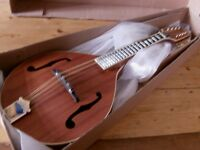 all solid cove creek mandolin