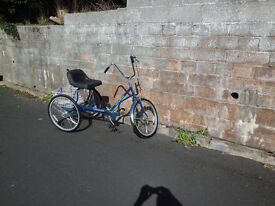 teen/adult tricycle with comfy seat