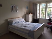 Huge Double Room available in beautiful flat in Putney