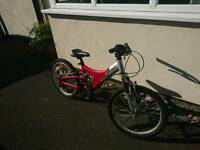 Child Giant MTX150 Mountain Bike