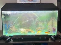 Aquarium fish tank plus more