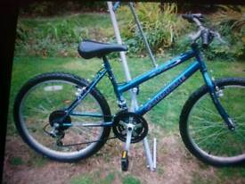 Suit 10 ish to small adult good working order 15 inch frame 24inch wheels good working order