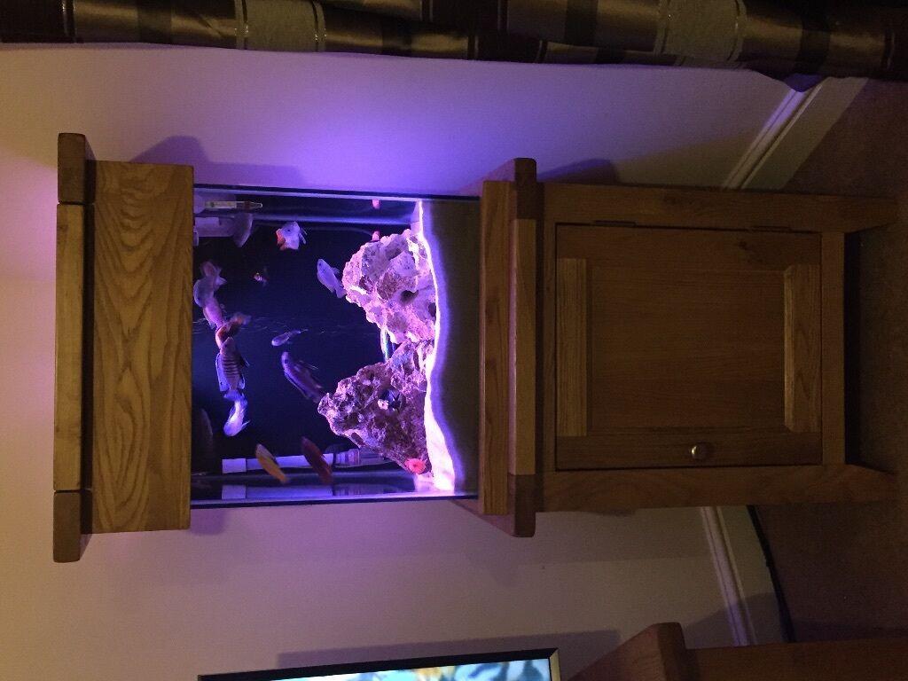 Aqua Oak Cube Fish Tank Amp Stand 3 Buying Options See