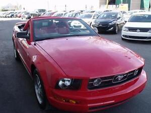 2006 Ford Mustang Convertible Pony pack/rouge int