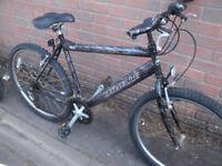 Emmelle Cheetah Mountain Bike