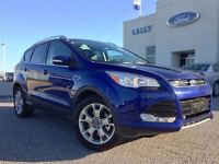 2015 Ford Escape Titanium 4x4 Navigation Panoramic Roof Executiv