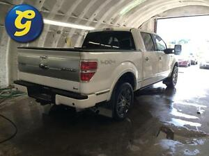 2010 Ford F-150 PLATINUM*SUPERCREW*NAVIGATION*SUNROOF*LEATHER*BA Kitchener / Waterloo Kitchener Area image 3