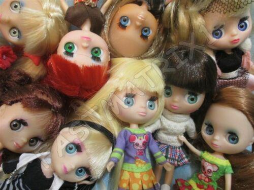Littlest Pet Shop Lps Lot of 2 Random Lovely Blythe Dolls Authentic Best Deal