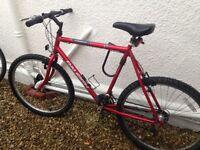 Classic Raleigh mountain bike