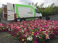 HORTICULTURAL / NURSERY worker and LANDSCAPE worker required. Jobs available