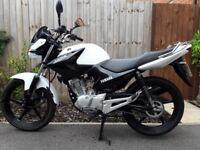 White Yamaha YBR 125