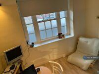 1 bedroom flat in Vincent Street, London, SW1P (1 bed) (#844522)