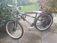 Spealized P2 Cromo Jump Bike