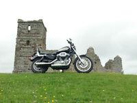 Fantastic Harley Sportster 1200R