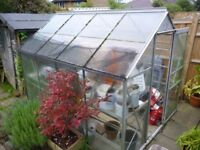 Halls Popular 8x6 Greenhouse.