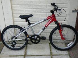 Boys (hi-spec) Mongoose Rockadile Mountain Bike