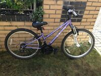 Girls Bicycle for sale