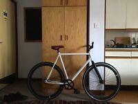 Fixie bike- single speed