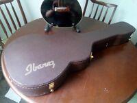 Ibanez Guitar Case