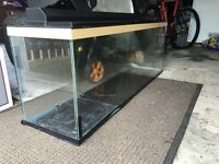 4ft fish tank with lid and lights