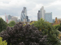 4-Double rooms for Rent near CANARY WHARF - near caning town tub station- £125 per week,