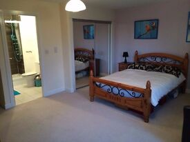 LAST DEALS OF DECEMBER! ALL DISCOUNTED ! 1 MONTH RENT! 2 WEEKS DEPOSIT! BOOK IT NOW