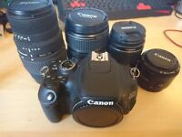 Canon 600D Digital SLR Camera With 4 Lenses, Case, Batteries and Accessories