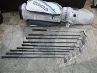 Ladies Taylormade bag and assortment of clubs. Great for someone to get started