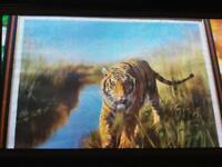 Leonard pearman tiger painting